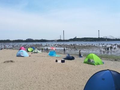 海の公園の混雑状況