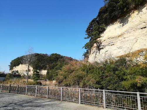 本牧市民公園の崖