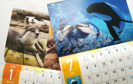 八景島シーパラダイスのカレンダー