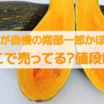南部一郎かぼちゃ